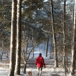 Man walking with dog in snow — Stockfoto