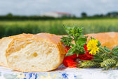 Fresh bread and grain ears outdoor — Stock Photo