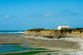 Rough north cape island Oleron — Stock Photo