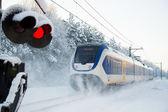Niederländische zug im schnee — Stockfoto