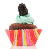 Chocolate cupcake with flower — Stock Photo