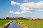 Dutch agriculture landscape — Stock Photo