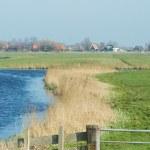Dutch landscape — Stock Photo #18820115