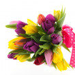 Colorful bouquet tulips for celebration — Stock Photo #19410069