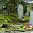 Old graves — Stock Photo #2254596