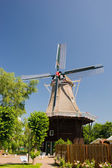 Windmill in Dutch Groningen — Stock Photo