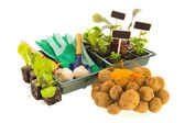 Vegetables for gardening — Foto de Stock