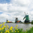 Windmills at Dutch Zaanse Schans — Stock Photo