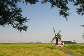 Dutch windmill in Friesland — Stock Photo