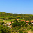 Landscape Languedoc — Stock Photo