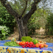 Vegetables and fruit in French garden — Stock Photo