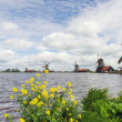 Windmills at Dutch Zaanse Schans — Stock Photo #29702057