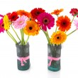 Gerber flowers in vases — Stock Photo