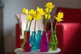 Yellow daffodils in interior — Foto de Stock