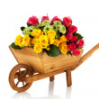 Wheel barrow flowers — Stock Photo #32924923