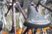 Water on saddle — Stock Photo