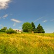 House on the hill — Stock Photo
