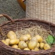Stock Photo: Potatoes and vegetables in baskets