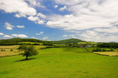 Wide landscape in French Bourgogne — Stock Photo