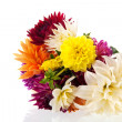 Bouquet Dahlias — Stock Photo #37289471