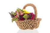 Dragon flowers in wicker basket — Stock Photo