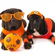 Stock Photo: Dutch soccer supporters in orange
