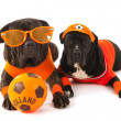 Dutch soccer supporters in orange — Stock Photo