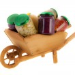 Wheel barrow preserved vegetables — Stock Photo #40025787