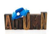 Autumn in vintage text — Zdjęcie stockowe