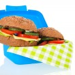 Healthy brown bread roll in blue lunch box — Stock Photo #41951537