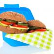 Healthy brown bread roll in blue lunch box — Stock Photo
