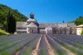 Abbey in French Senanque — Zdjęcie stockowe