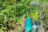 Water with mint and lemon balm — Stock Photo