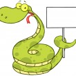 Happy Snake Holding Up A Blank Sign — Stock Photo