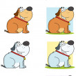 Fat Dog Sitting Cartoon Mascot Characters- Collection - Stock Photo