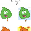Leaf Cartoon Mascot Characters- Collection — Stock Photo #19833031