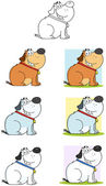 Fat Dog Sitting Cartoon Mascot Characters- Collection — Stock Photo