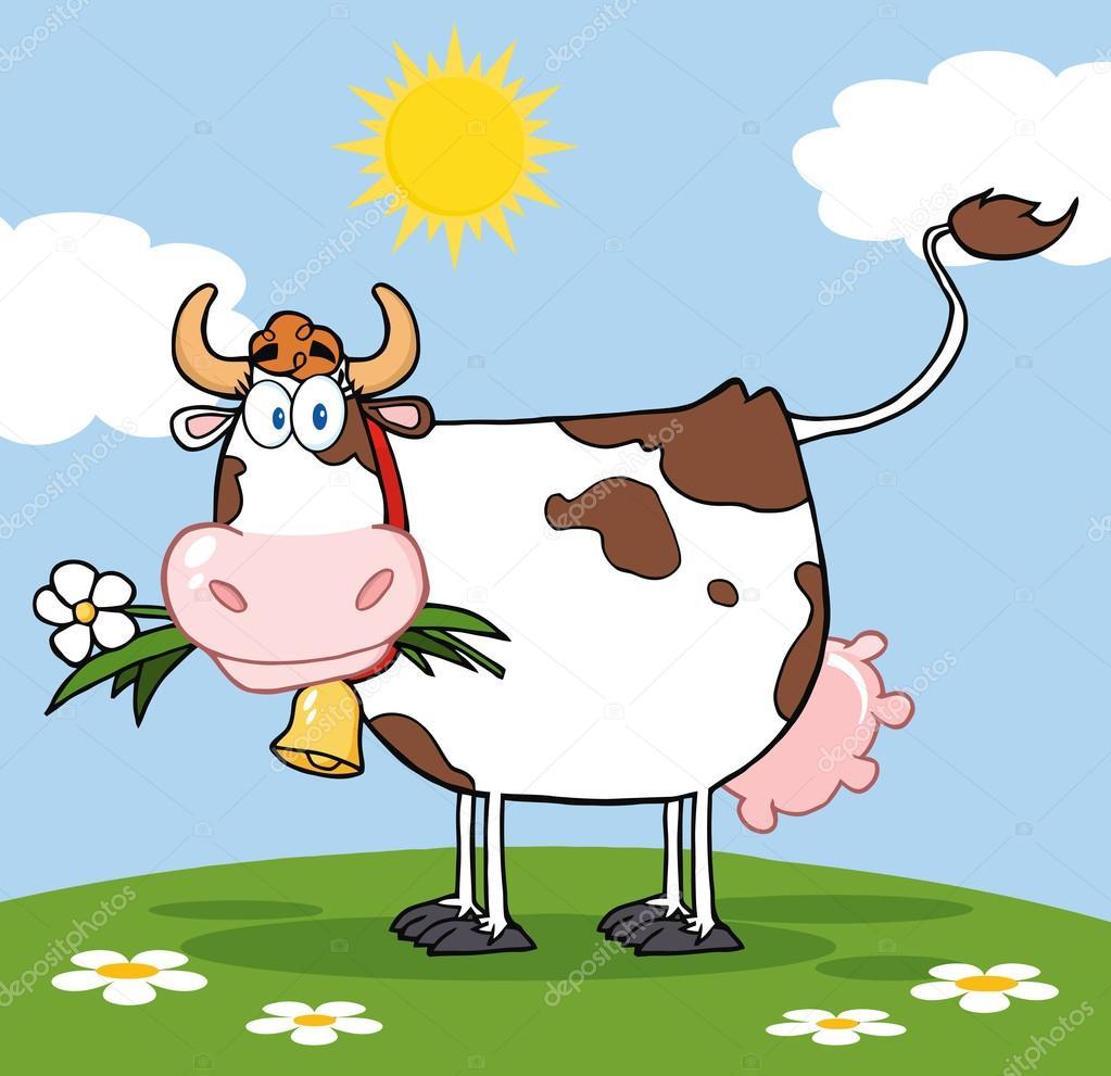 Mucca da latte con fiore in bocca un prato — foto stock