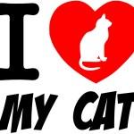 I Love My Cat Red Heart — Stock Photo