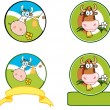 Dairy Cow Cartoon Banner.Collection — Stock Photo