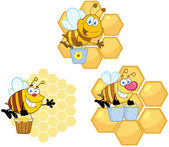 Bee Carrying Honey With Hive — Stock Photo