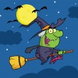 Stock Photo: Witch Ride Broomstick In Night
