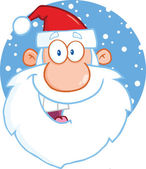 Santa Claus Head Cartoon Character — Stock Photo