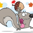 Crazy Gray Squirrel Character Running With Acorn — Stock Photo