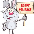 Funny Gray Rabbit Character Holding A Wooden Board With Text — Stock Photo #42262505