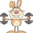 Smiling Rabbit Cartoon Character Training With Dumbbells — Stock Photo #42404529