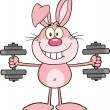 Smiling Pink Rabbit Cartoon Character Training With Dumbbells — Stock Photo #42404543