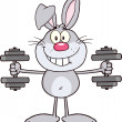 Smiling Gray Rabbit Cartoon Character Training With Dumbbells — Stock Photo #42404557