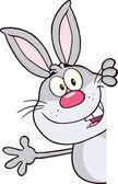 Gray Rabbit Cartoon Character Looking Around A Blank Sign And Waving — Stock Photo