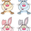 Rabbit Cartoon Character 4 Set Collection — Stock Photo